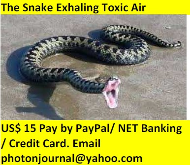 The Flying Snake on Satelite book