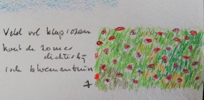 Veld vol klaprozen tekening en haiku