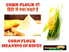 Corn Flour को हिंदी में क्या कहते हैं-What Is Corn Flour in Hindi - सटीक जवाब