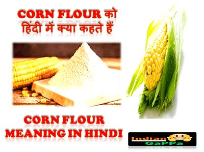 corn-flour-ko-hindi-mein-kya-kahate-hain
