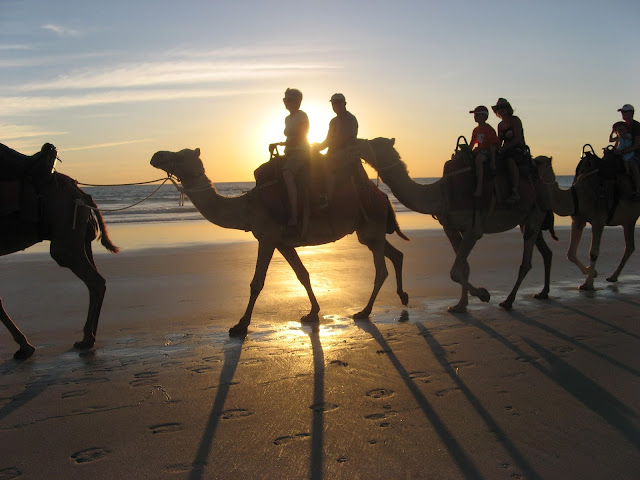 woman and man on camels with sunset behind