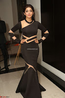 Pranitha Subhash in a skin tight backless brown gown at 64th Jio Filmfare Awards South ~  Exclusive 164.JPG