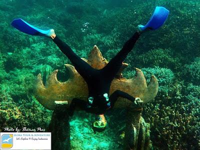 spot snorkeling taman nemo pahawang