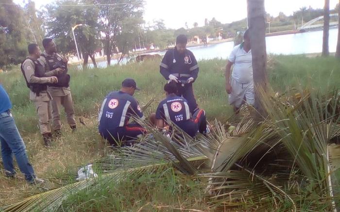 Caculé: Homem cai do pé de coqueiro e sofre graves ferimentos