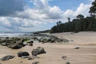 pantai di alas purwo