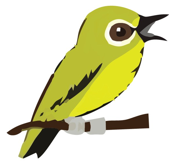 graphic design logo bird