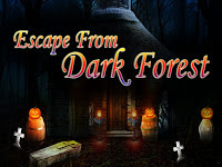 Play  Top10NewGames - Top10 Escape From Dark Forest