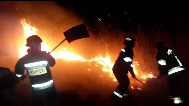 Numărul incendiilor vegetale au sporit. Cu ce recomandări vin colaboratorii Secţiei Situaţii Excepţionale Leova