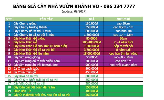 Đăng tin rao vặt: Cung cấp sỉ lẻ cây cherry giá rẻ giao hàng toàn quốc Bang-gia-nha-vuon-khanh-vo-0917%2B-%2BCopy