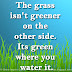 The grass isn't greener on the other side. Its green where you water it.