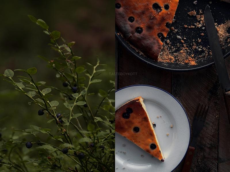 Käsekuchen mit Blaubeeren und Heidelbeeren pflücken im Wald Food Fotografie düster | Tasteboykott