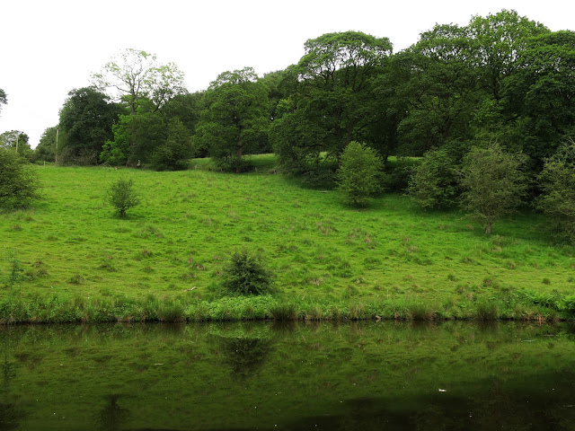Rochdale Canal near Mytholmroyd, Calderdale, West Yorkshire. With grassy field and trees.