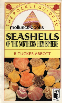 The pocket guide to Seashells of the Northern Hemisphere