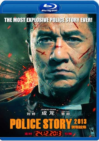 Police Story 2013 Dual Audio Hindi Bluray Download