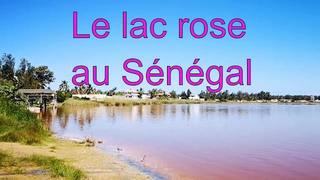 Lac Rose, une merveille locale  situé au nord de Dakar au Sénégal : Tourisme, lac, rose, retba, sel, hôtel, plage, voyage, rallye, Paris, vacance, LEUKSENEGAL, Dakar, Sénégal, Afrique