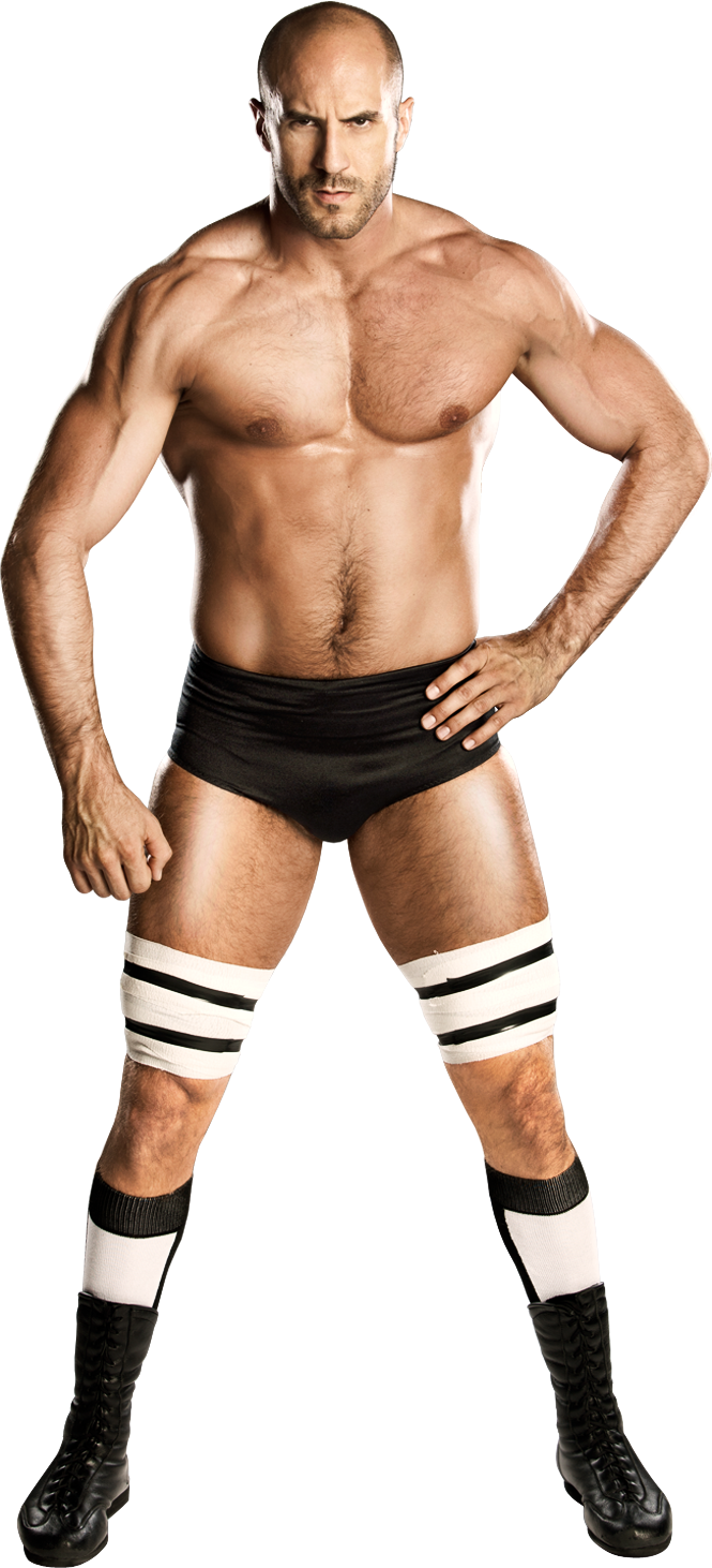 http://1.bp.blogspot.com/-a1JPGRzvPfk/Uy9Xo8lC1nI/AAAAAAAALkA/Y0Da_4NZrZA/s1600/Could+Cesaro+Turn+into+This+Year%27s+Version+of+Daniel+Bryan+1.png
