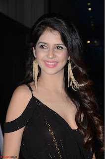 Kashish Vohra at Rogue Movie Audio Launch ~  (1).JPG