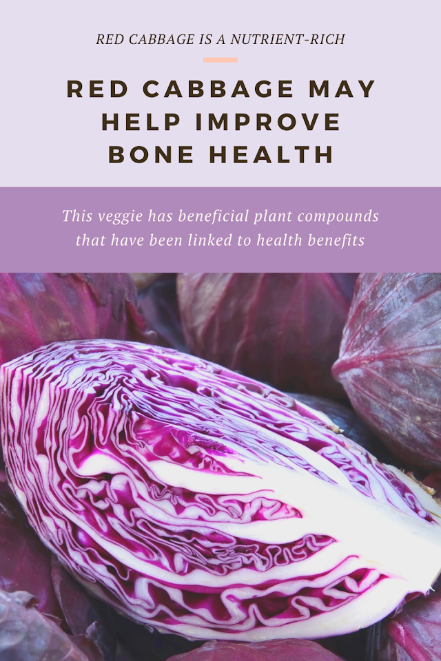 Red Cabbage May Help Improve Bone Health