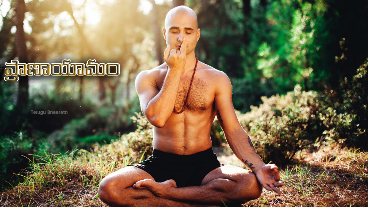 ప్రాణాయామం - శాస్త్రియకోణంలో సాధనం, శ్వాస. శ్వాసని, గతిని నియంత్రించే ప్రక్రియ - Pranayama - Practice in the scientific sense, breathing. Breathing, movement, regulating process