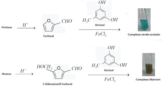reaçao reagente bial pentoses hexoses