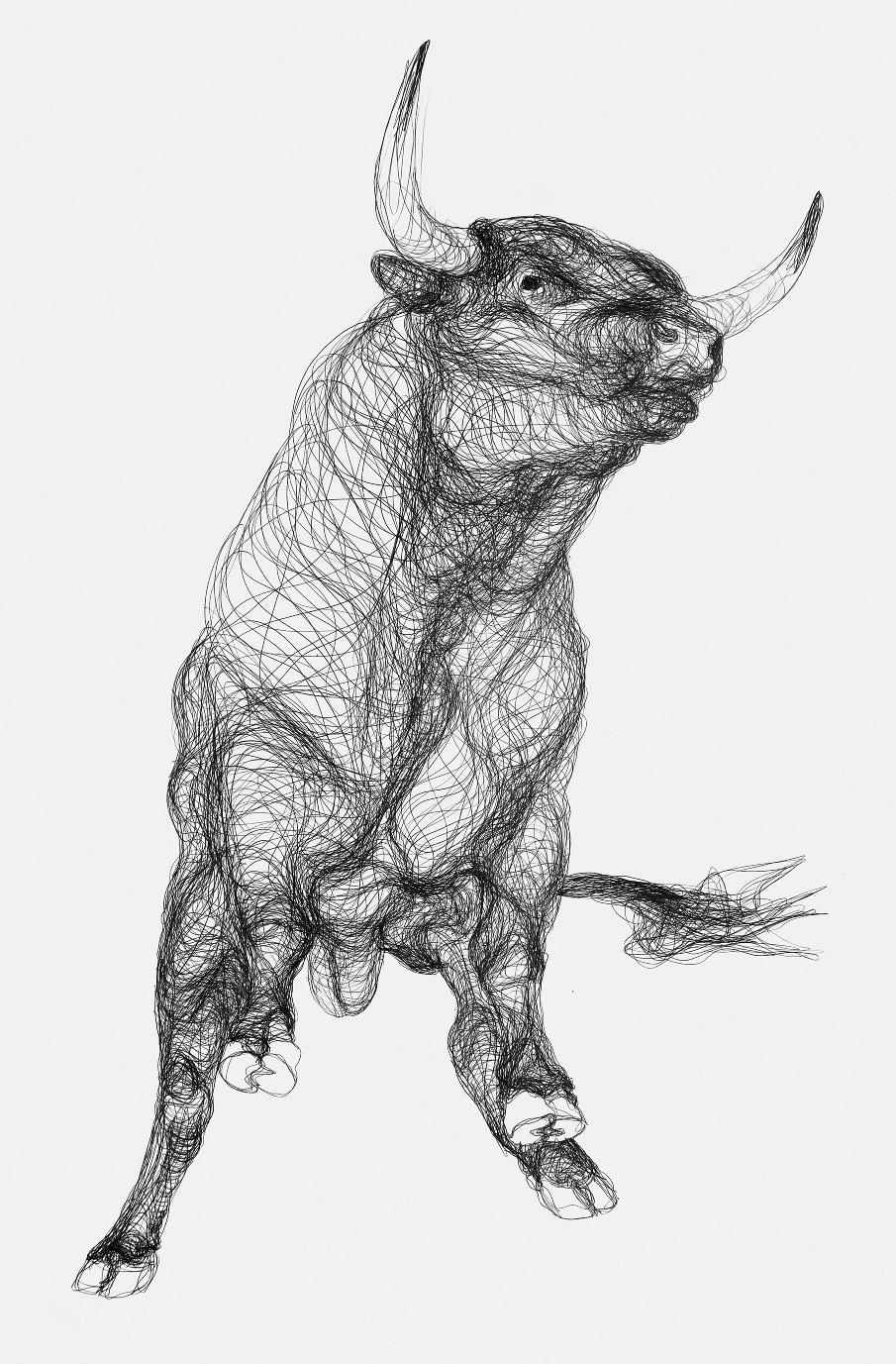 3400mm x 2500mm  Graphite drawing on paper Taurus Bull Drawing