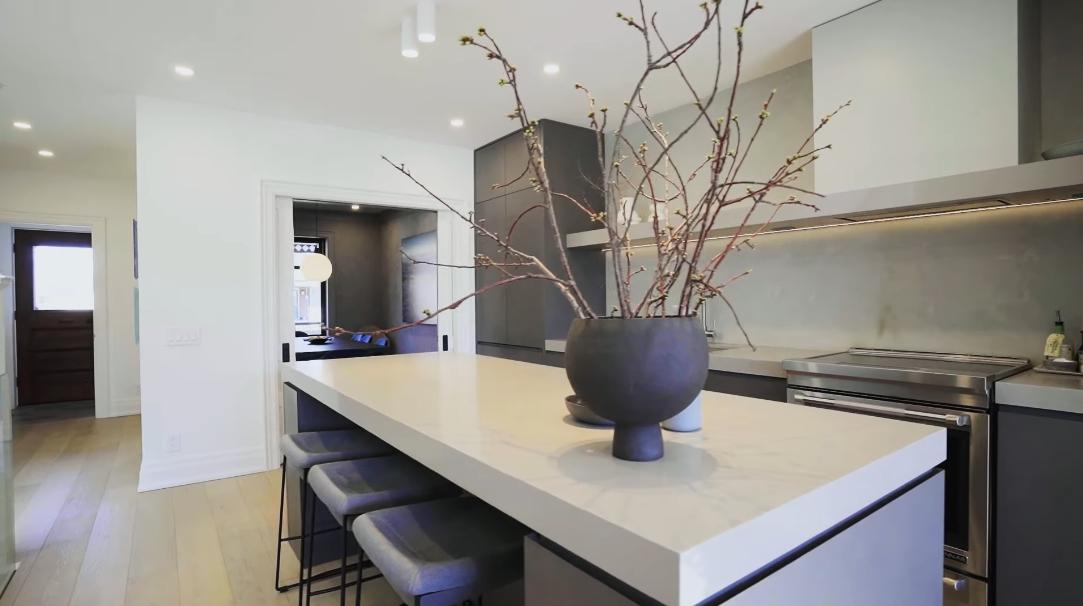43 Interior Design Photos vs. 448 Brock Ave, Toronto Luxury Home Tour