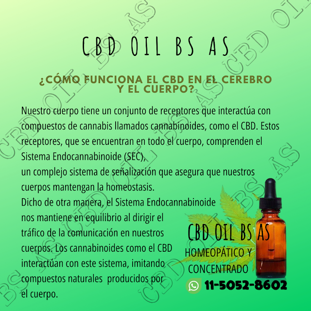 Cbd Oil Bs As