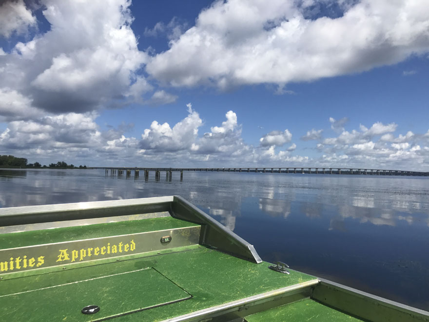 A view from the Sea Serpent of the St Johns River