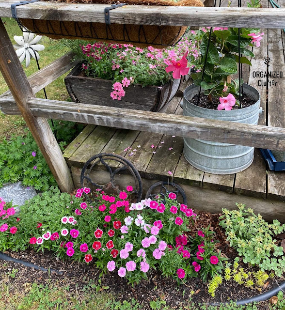 Photo of summer plants on and near the deck
