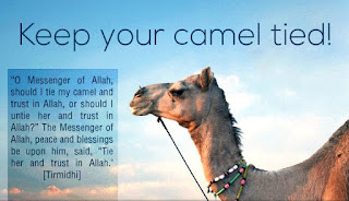 keep your camel tied