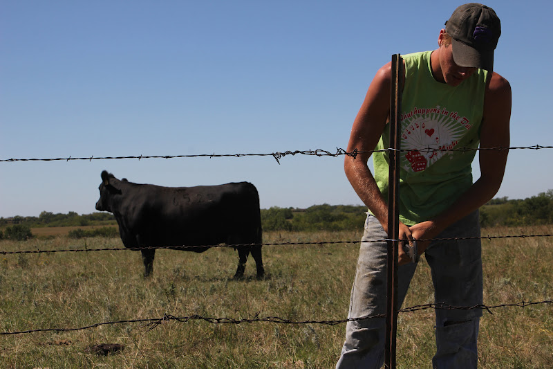 Kids, Cows and Grass: Dear Superman's Mom: a letter of thanks