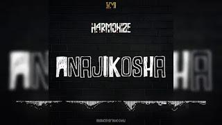 AUDIO | Harmonize - Anajikosha | Download Mp3