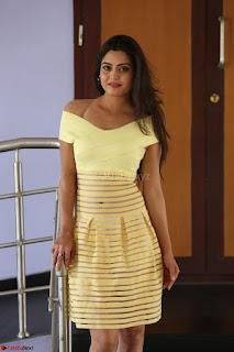 Shipra gaur in V Neck short Yellow Dress ~  033.JPG