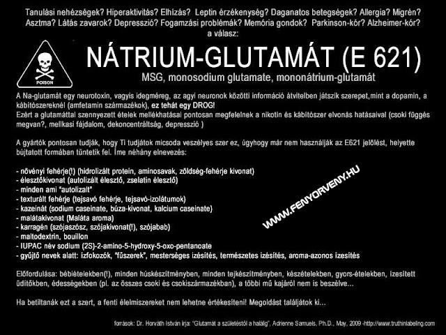 Nátrium-Glutamát (E 621) veszélyei