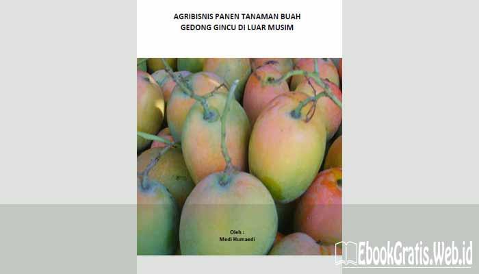 Ebook Agribisnis Panen Tanaman Buah Gedong Gincu di Luar Musim