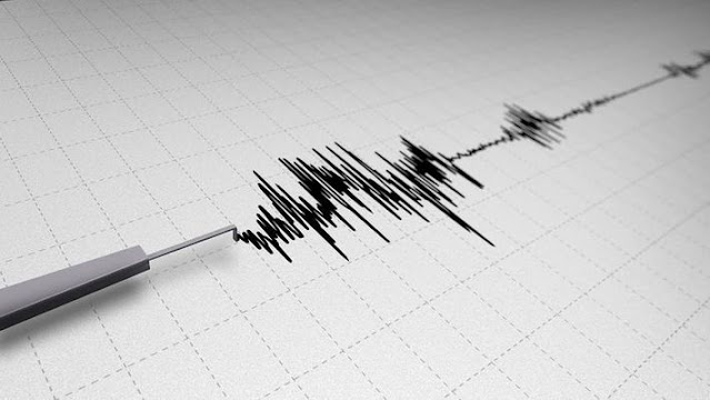Mild earthquake of 4.2 magnitude hits North Bengal districts, no damage reportedq