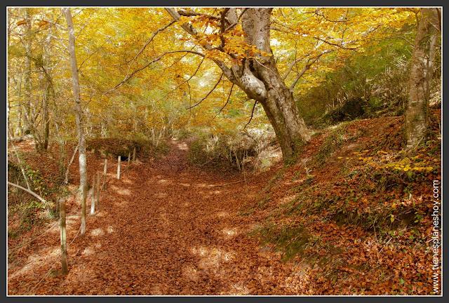 Paísaje de otoño: Nacedero del Urederra