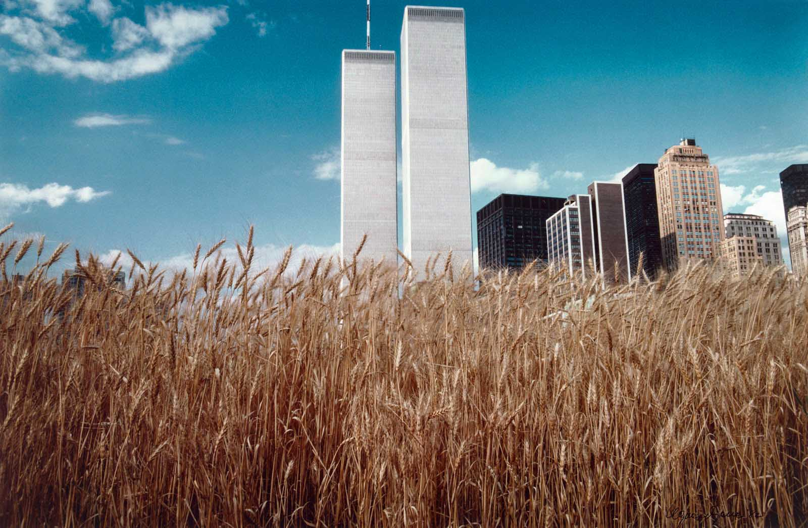 Blue sky and the World Trade Center.