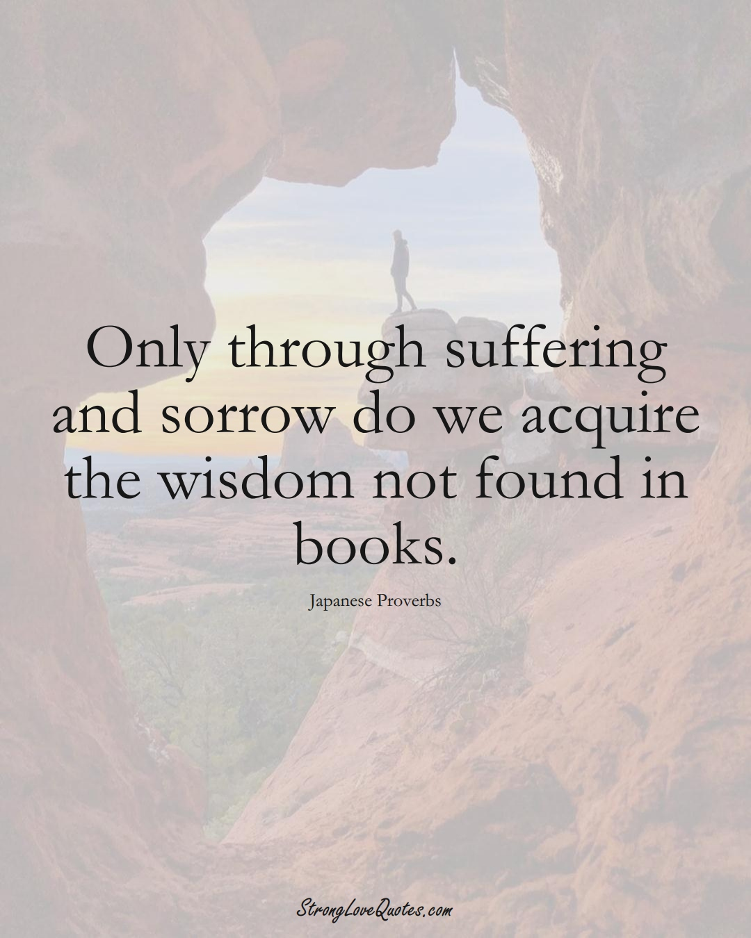 Only through suffering and sorrow do we acquire the wisdom not found in books. (Japanese Sayings);  #AsianSayings