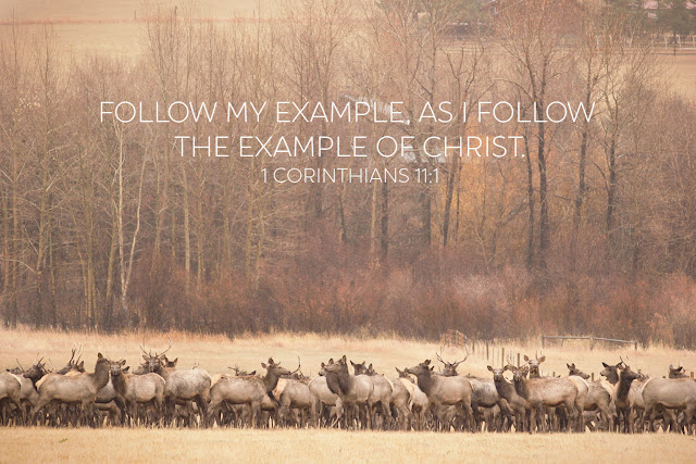 Inspiring verse about leading and following