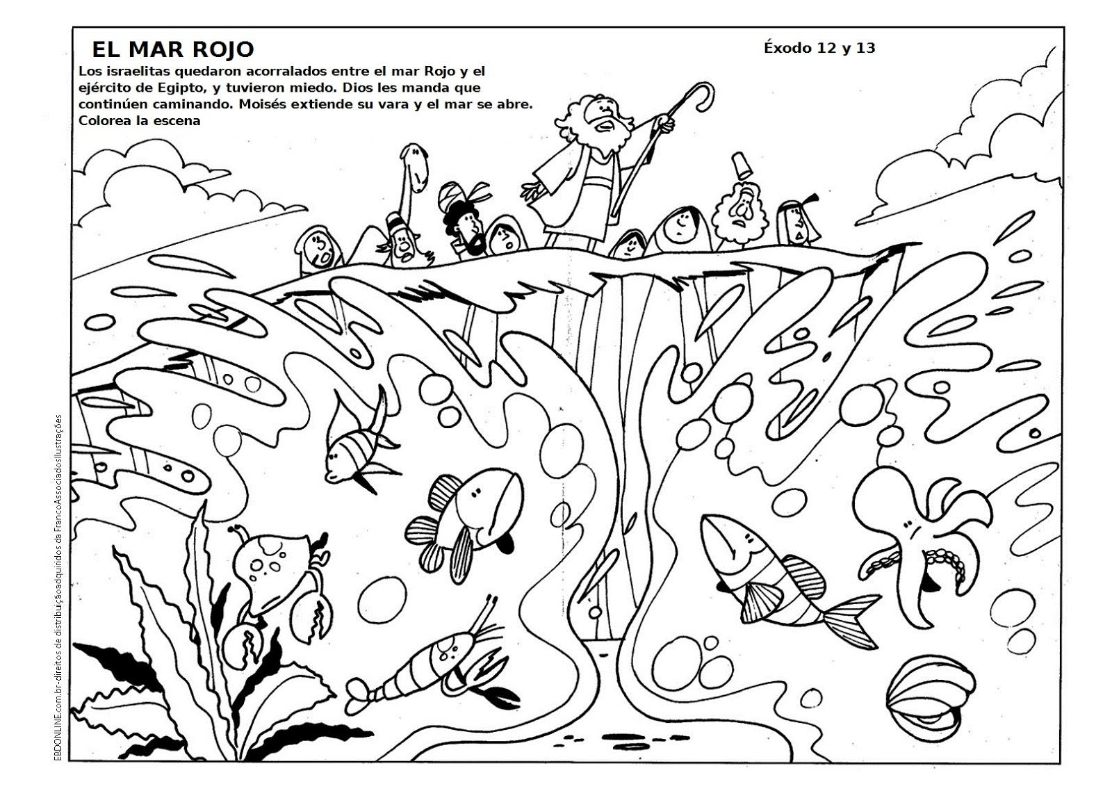 Buenas Noticias Para Los Ninos Colorear Moises Cruza El Mar Rojo
