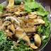 Mushroom And Swiss Cheese Salad Recipe