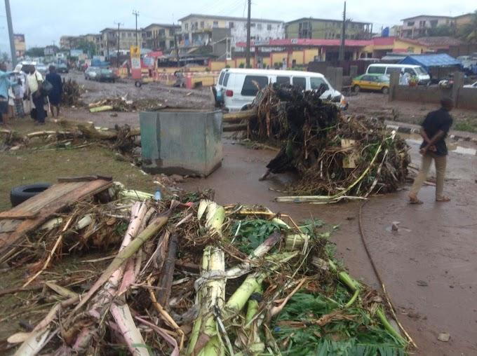 Heavy rainfall destroys 40 houses in Kebbi