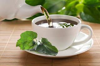 Dut Yaprağı Faydaları Nelerdir ve Çayı Hazırlanışı