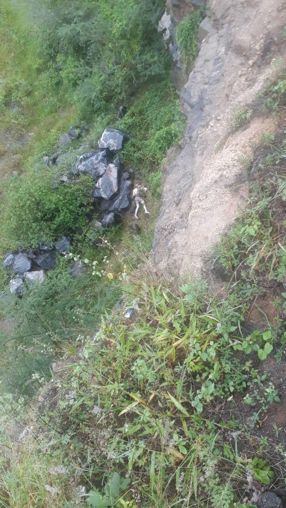 DESAPARECIDO: Corpo de jovem desaparecido é encontrado em estado de decomposição na região de Sapé/PB. Imagem Fortes.