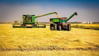 Nigerian farmers throw weight behind biotechnology 4