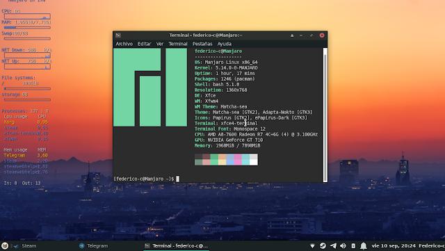 Solución a bug de consumo de RAM en manjaro XFCE