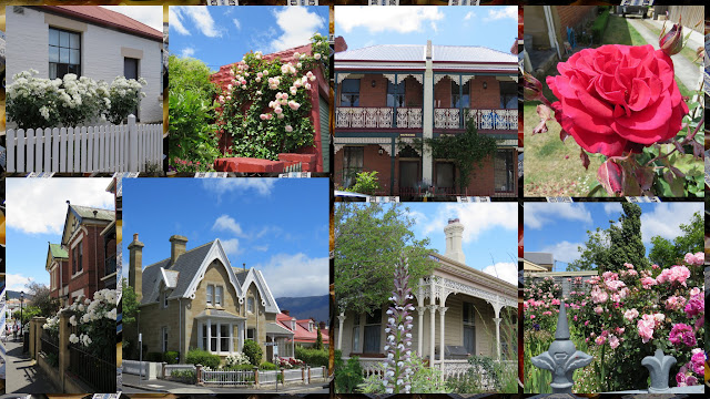 Houses, Flowers, and Picket Fences - Exploring Hobart, Tasmania on a Weekend City Break from Sydney Australia