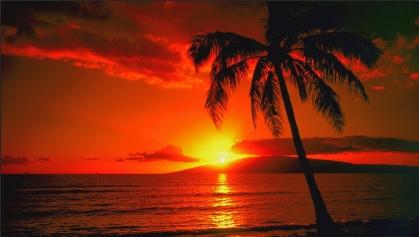 hawaii from australia