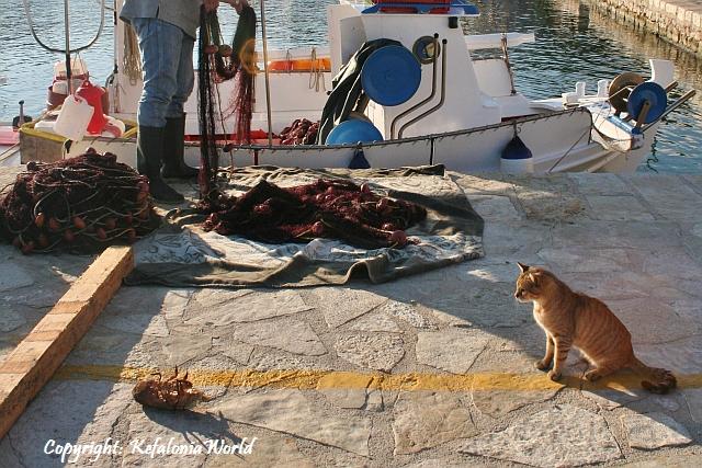 Fiskardo Kefalonia
